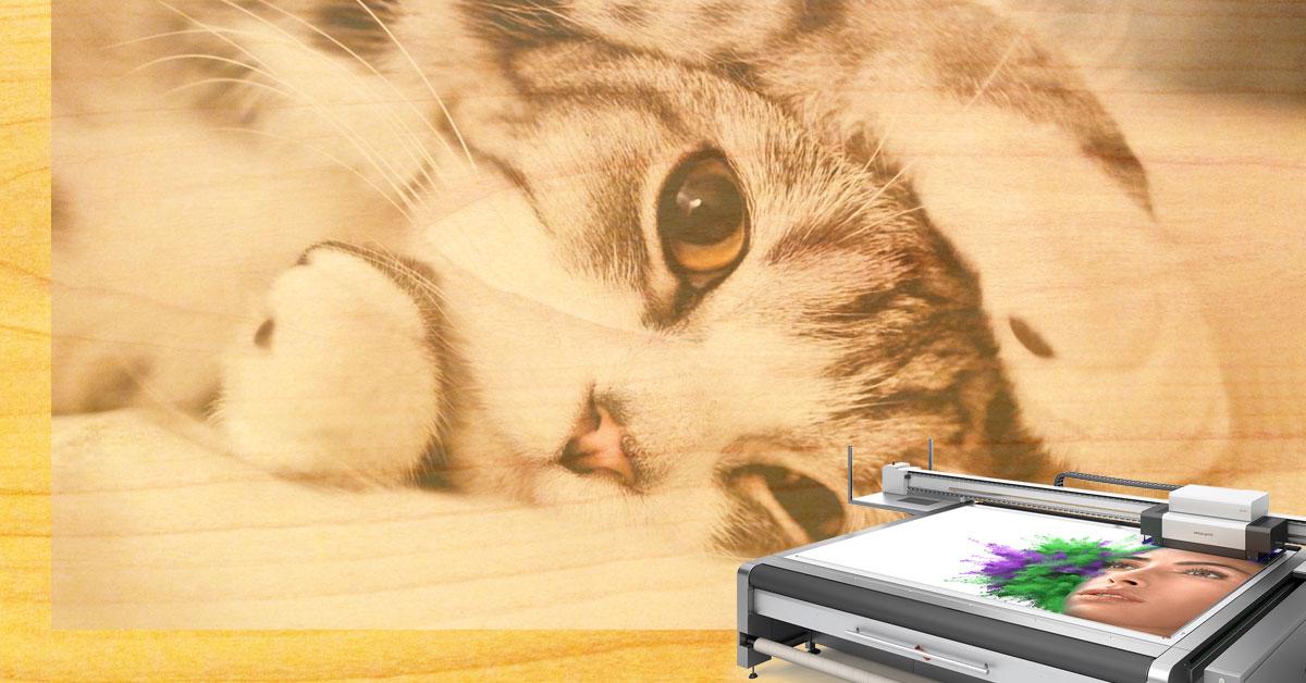 Stampa digitale su legno MDF con swissQprint.